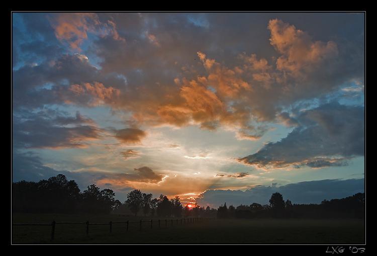 Sunset_Weidenzaun.jpg